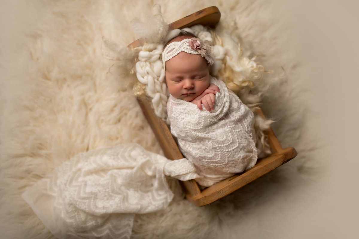 Chicago Illinois LaGrange Newborn Photographers, photography