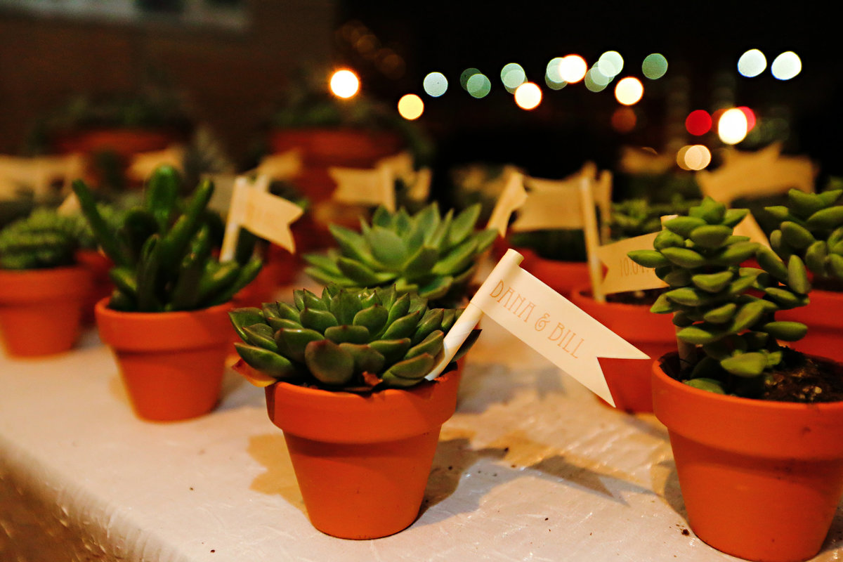 Dana & Bill - Succulent Favors