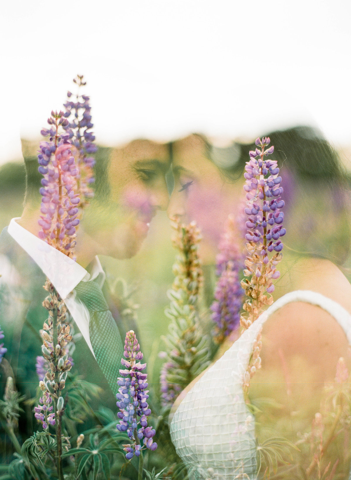 nantucket wedding adventure wedding couple in field of flowers