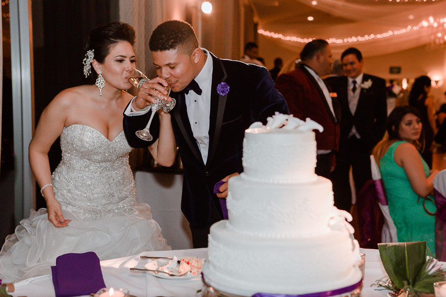 newly weds cut cake and drink champagne