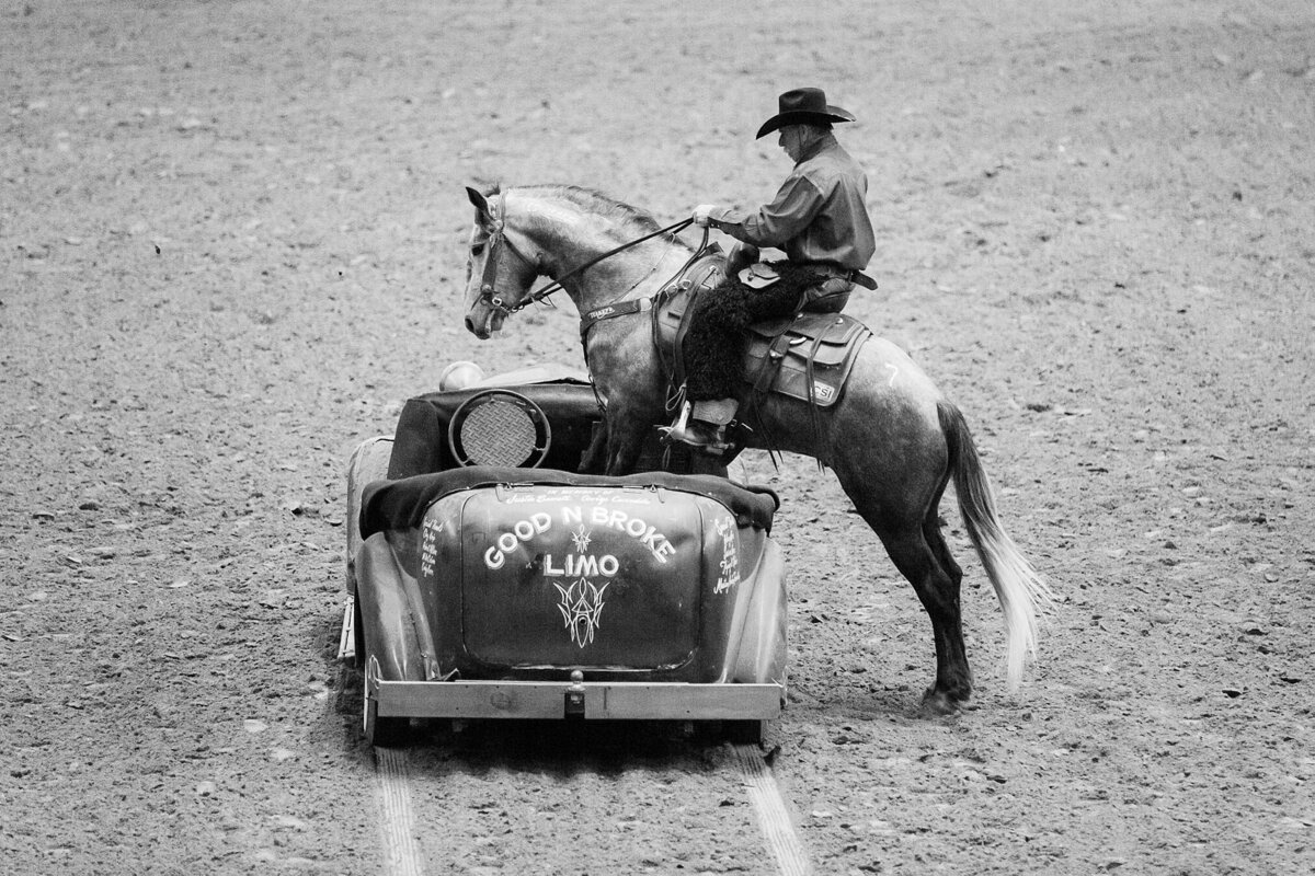 mustang horse jumping in a car with a cowboy on his back
