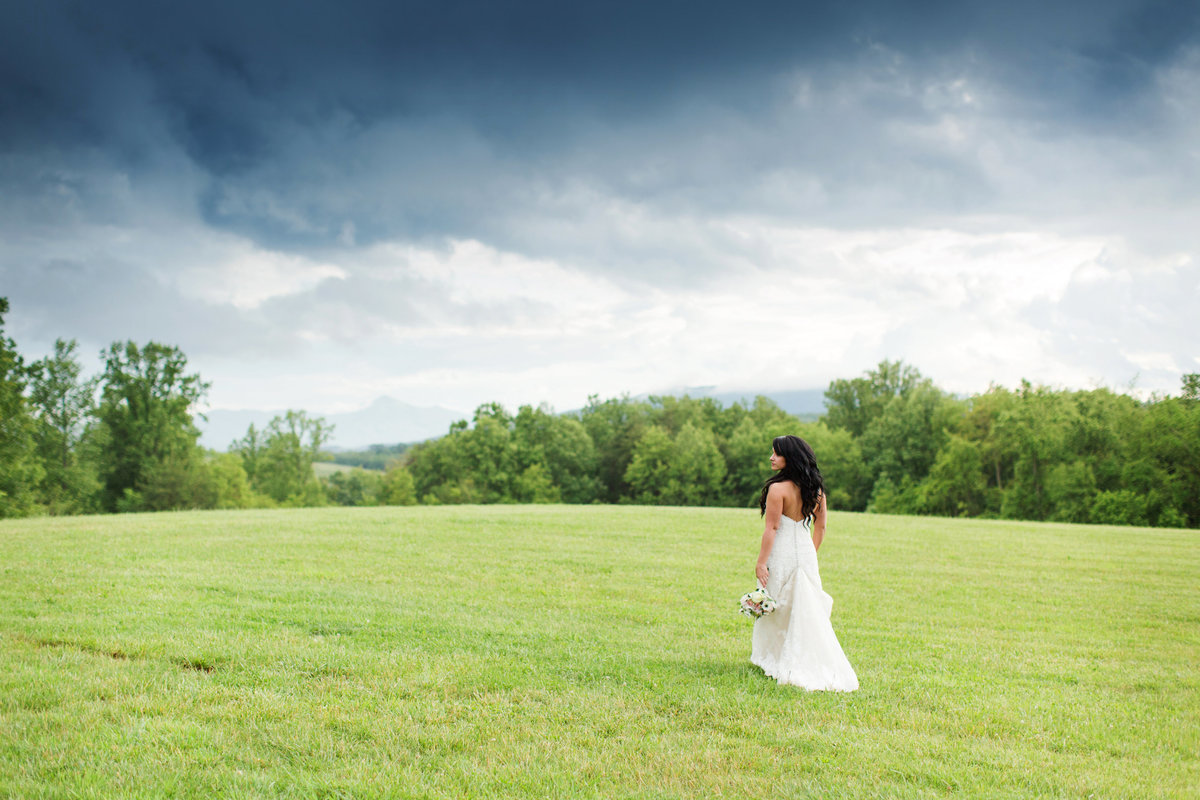 bridal portrait skyryder engagement wedding photography blacksburg roanoke charlottesville lexington radford-012