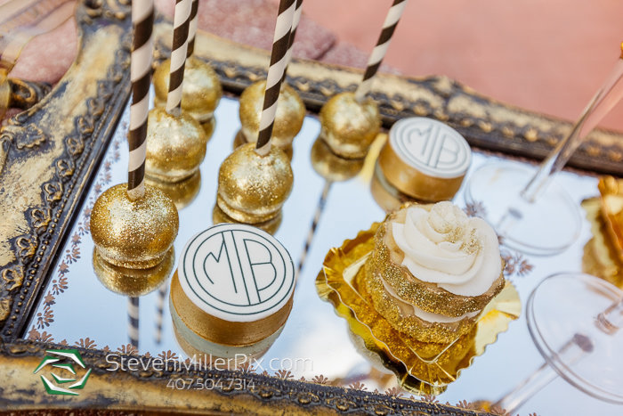 luxmore-estate-proposal-orlando-wedding-photographers_0096