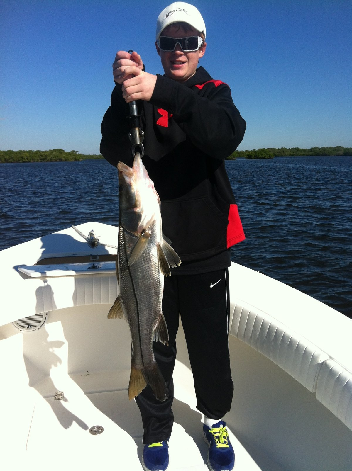 snook fish photo