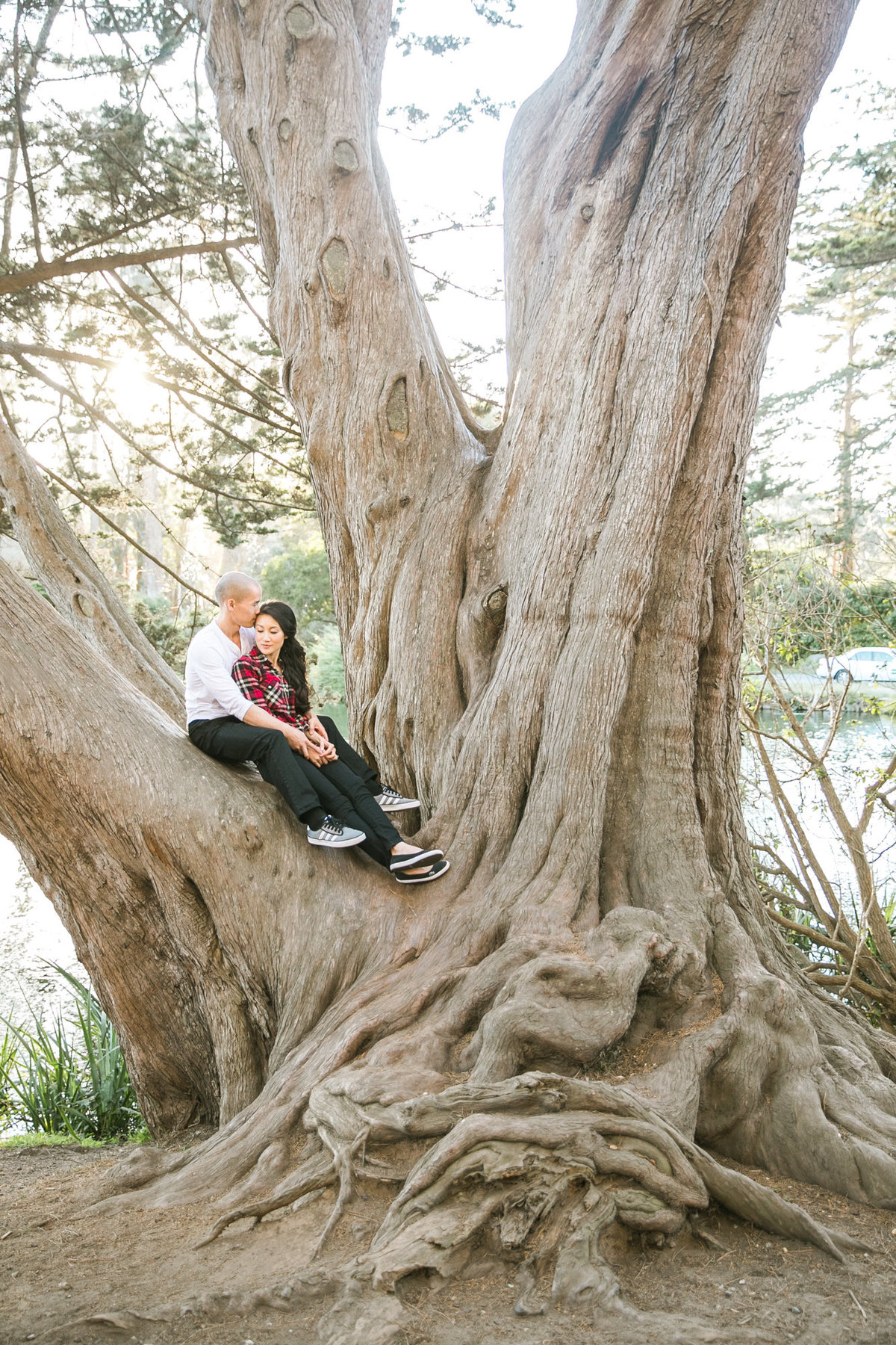 cafe_golden_gate_park_engagement_015