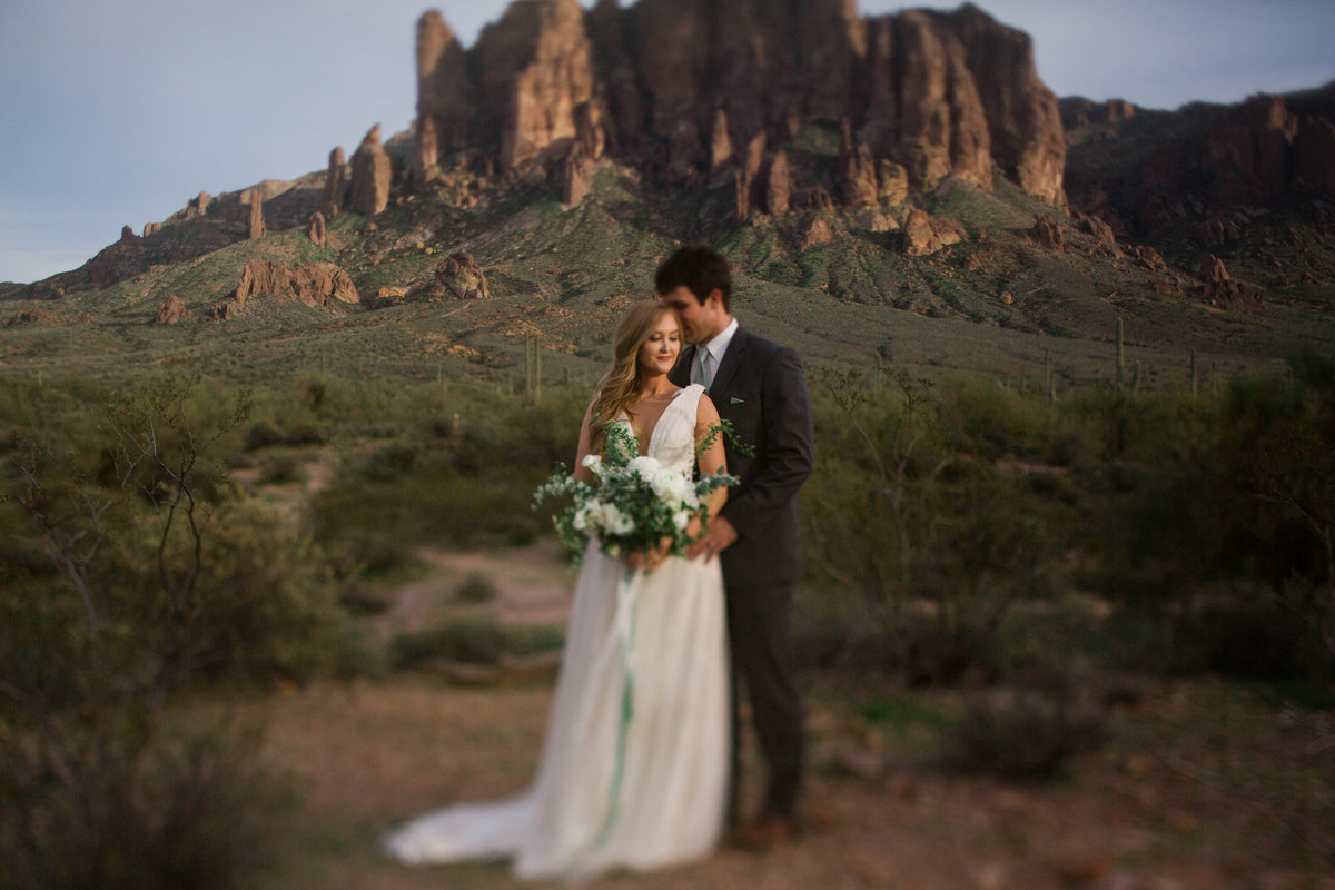 Bride and Groom at Lost Dutchman State Park