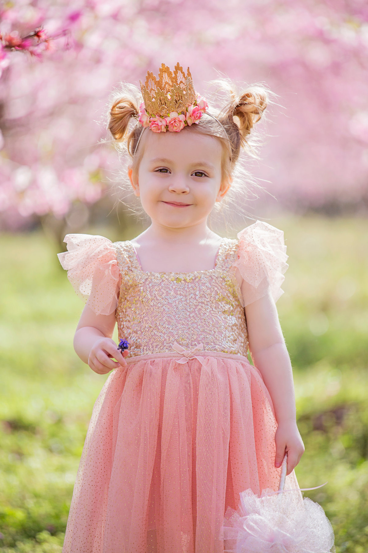 charlotte family photographer jamie lucido creates a beautiful styled image of a child in a princess dress at the cherry blossoms