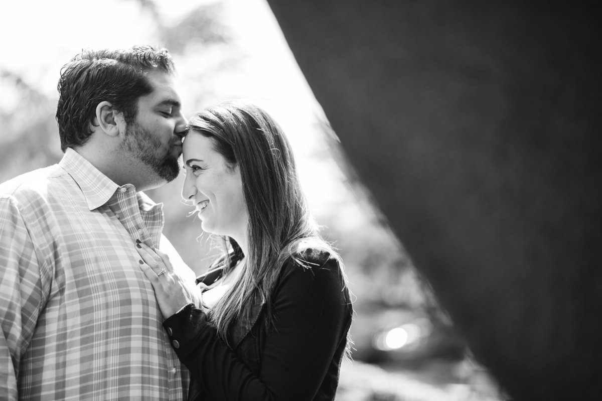 dc engagement session in sculpture garden