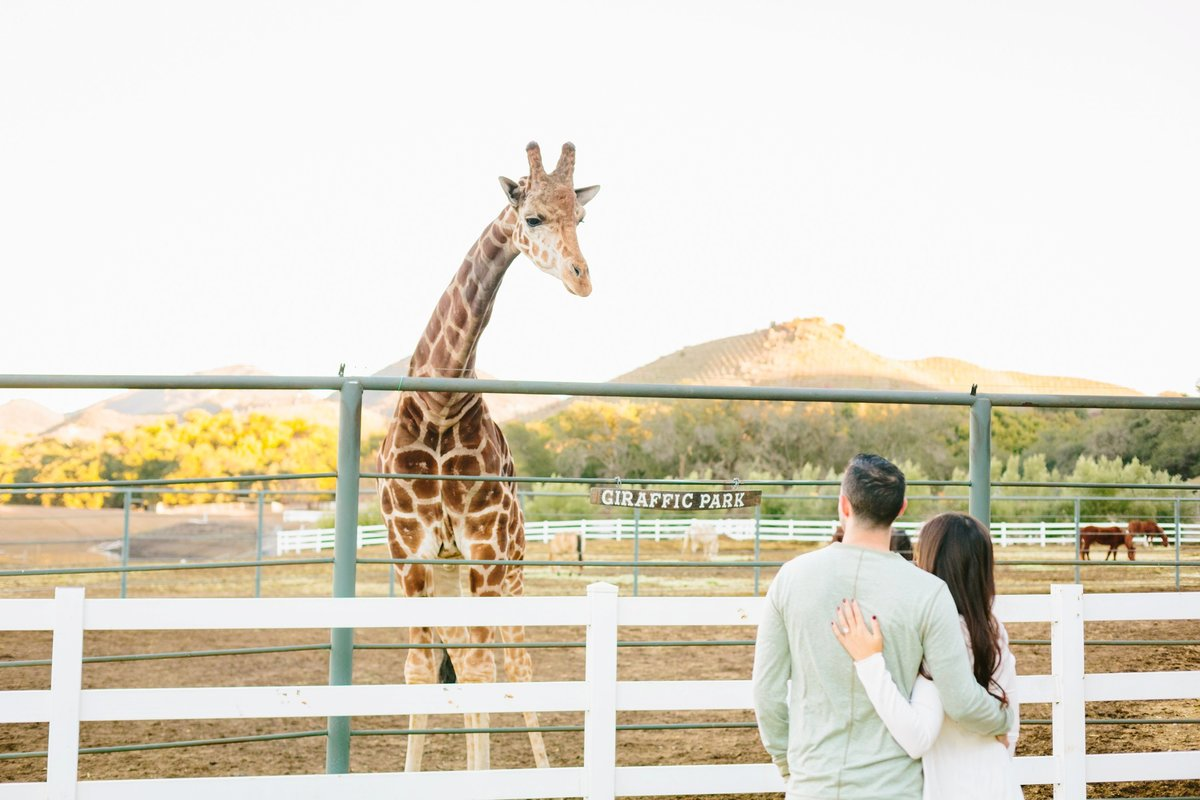 Engagement Photos-Jodee Debes Photography-118