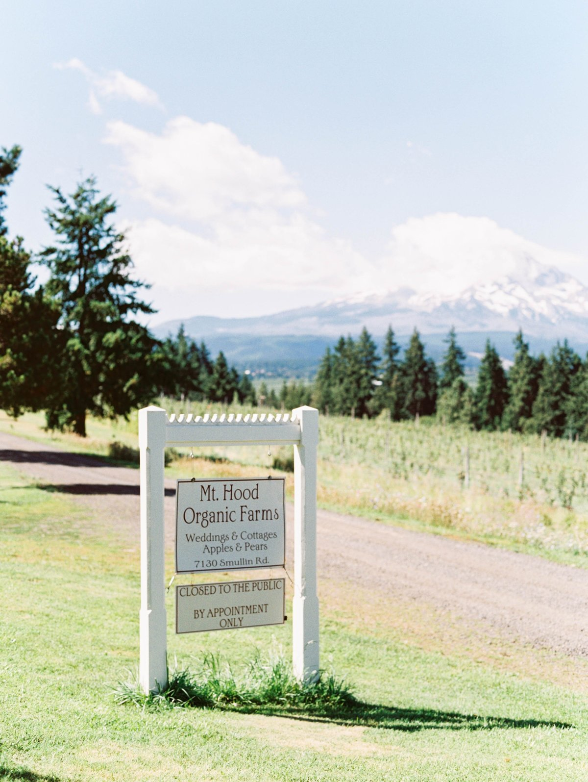 oregonwedding_mthoodorganicfarms_mthoodwedding053