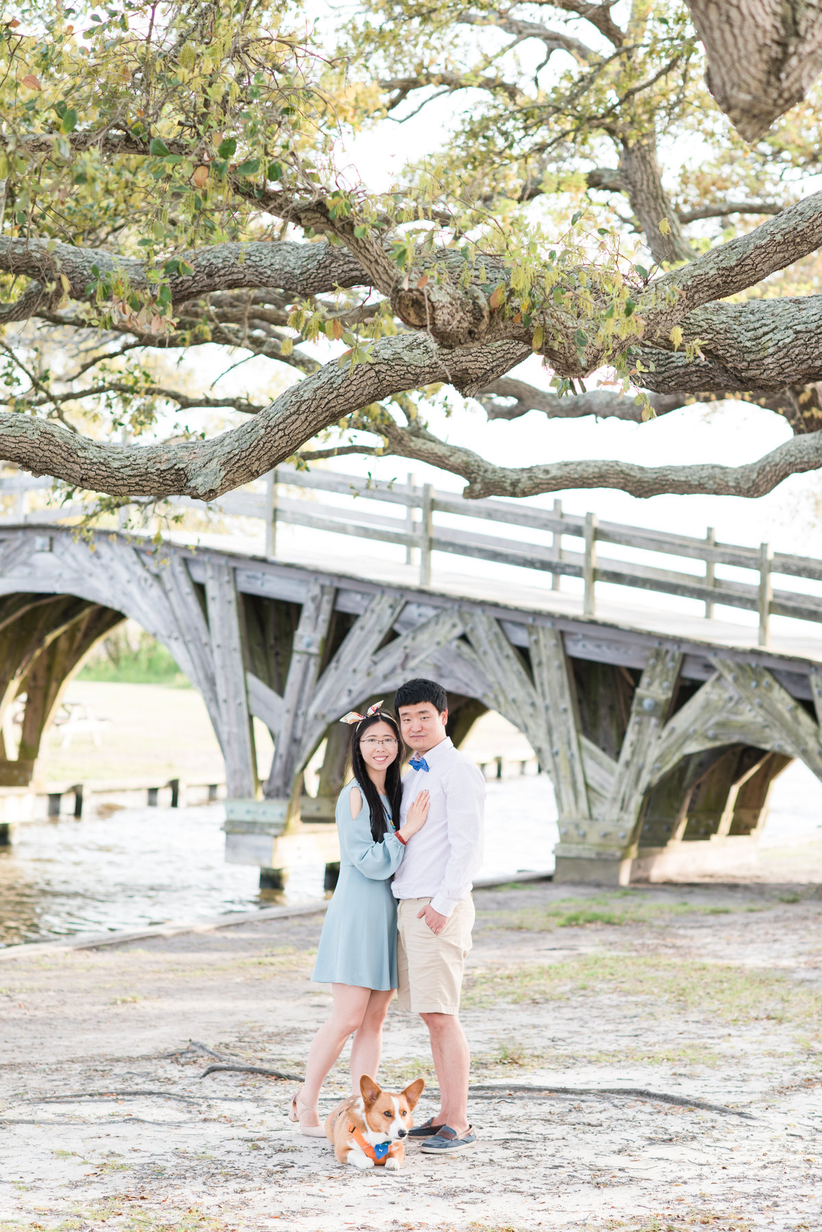 a bride wearing a short blue dress holding onto her fiance wearing khakis with a buttoned up shirt and a bowtie in front of a large tree and bridge with their corgi at Whalehead Club at Corolla Beach