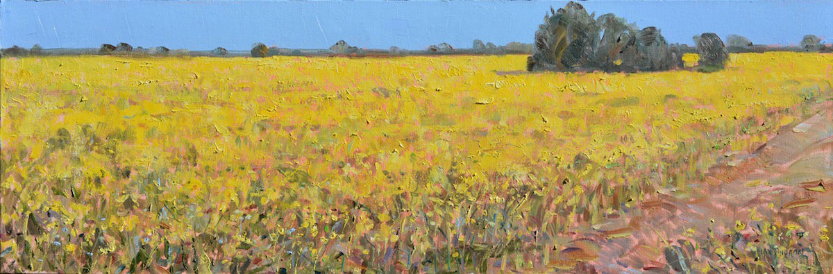 r_mustard_field_north_road_12_x_39