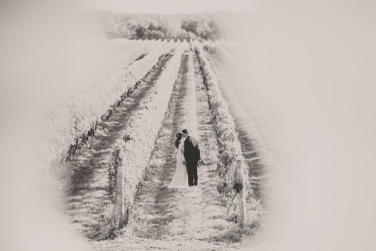 Ceremony - Raphael Vineyards - Imagine Studios Photography - Wedding Photographer