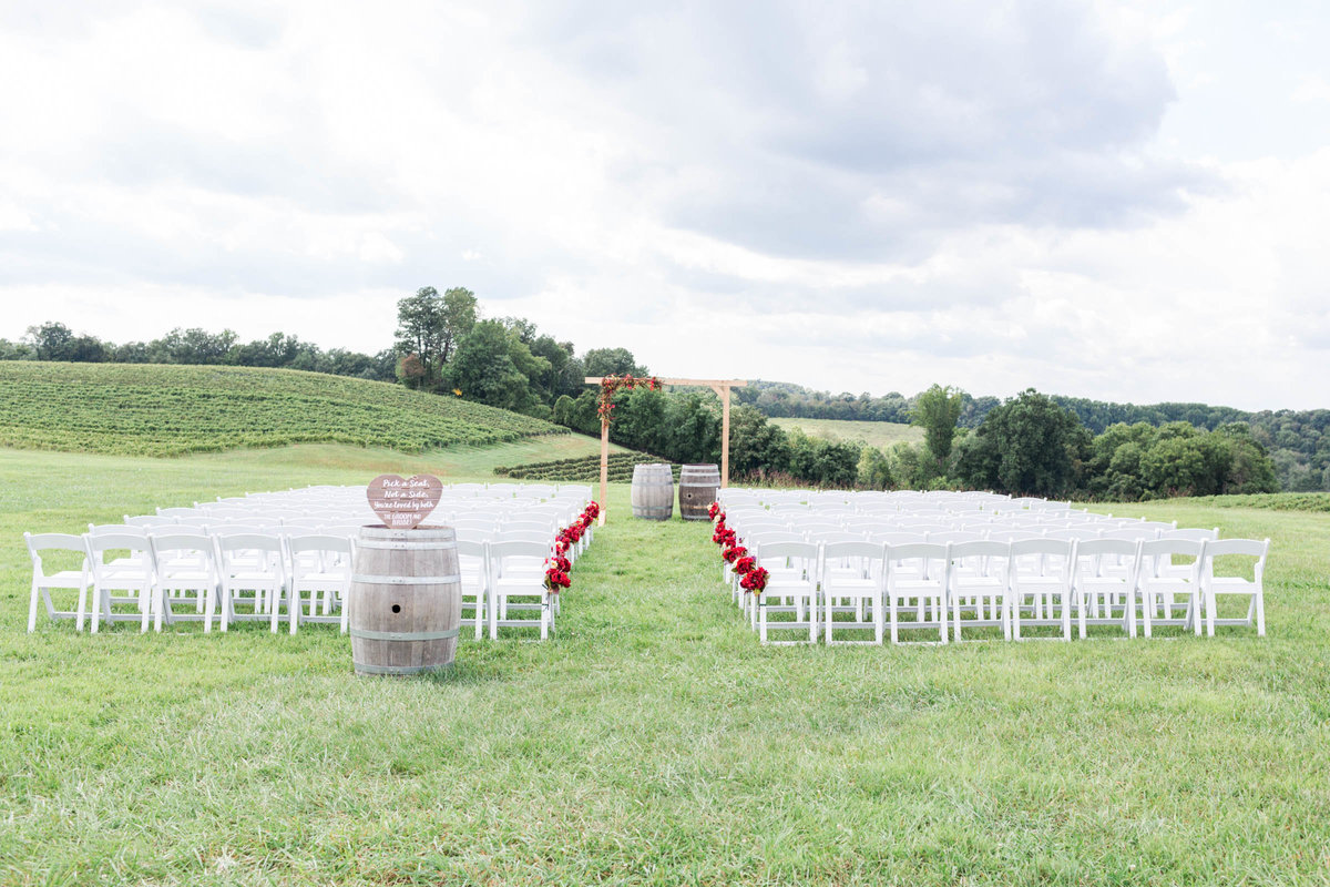 rachel word photography maryland wedding photographer liganore winery weddings bride and groom -1