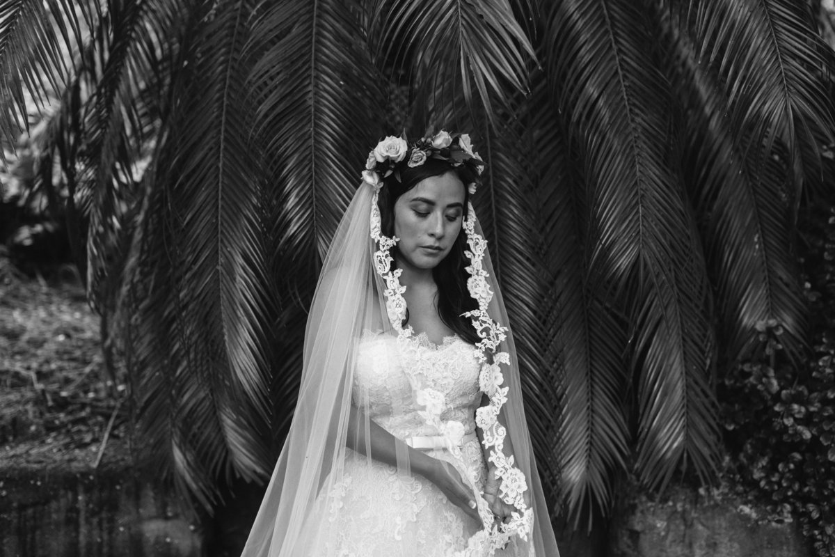 KUALOA-RANCH-WEDDING-PHOTOGRAPHER-MEGAN-SAUL (7 of 8)