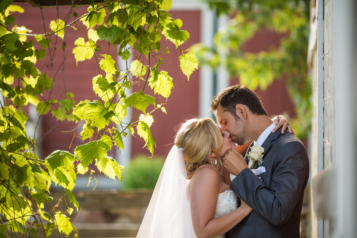 couple kissing on wedding day under ivy