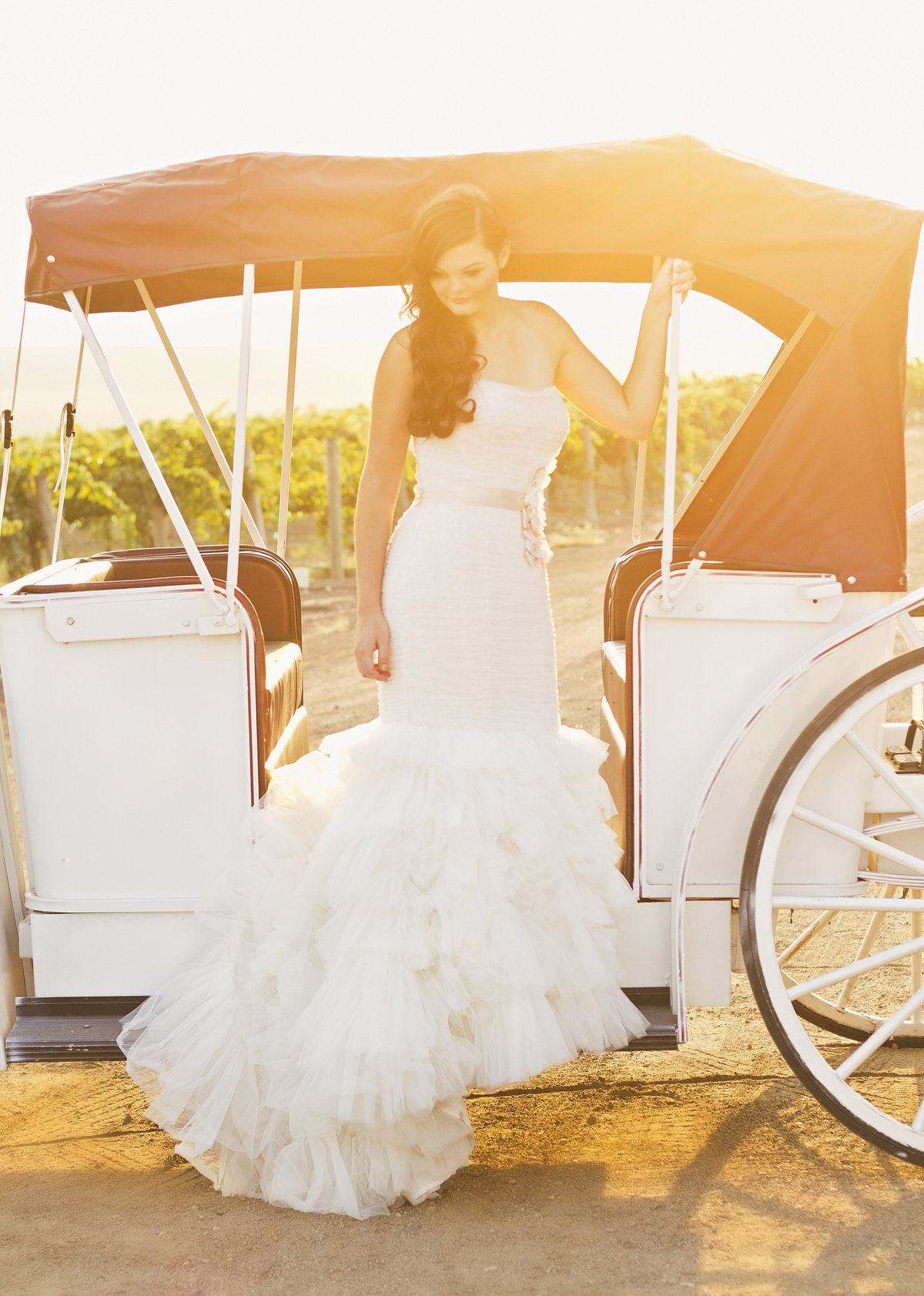 horse in carriage bridal photoshoot brand lookbook