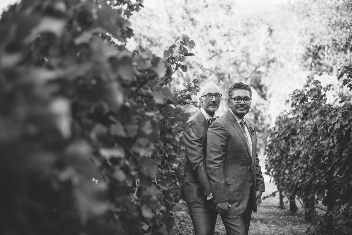 David&DavidWedding.PhotographerFavorites-Sept2017-20