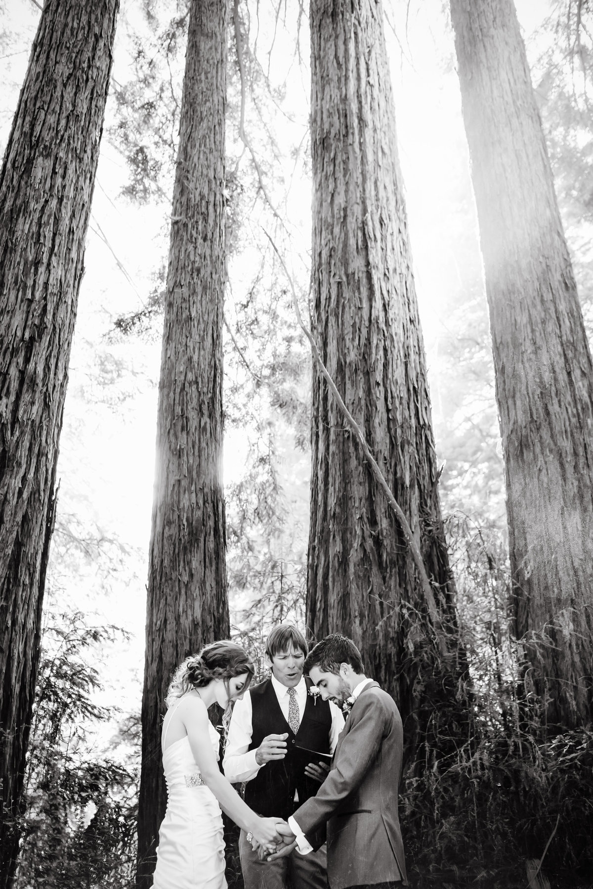 Wedding Ceremony in Redwood Tree during prayer