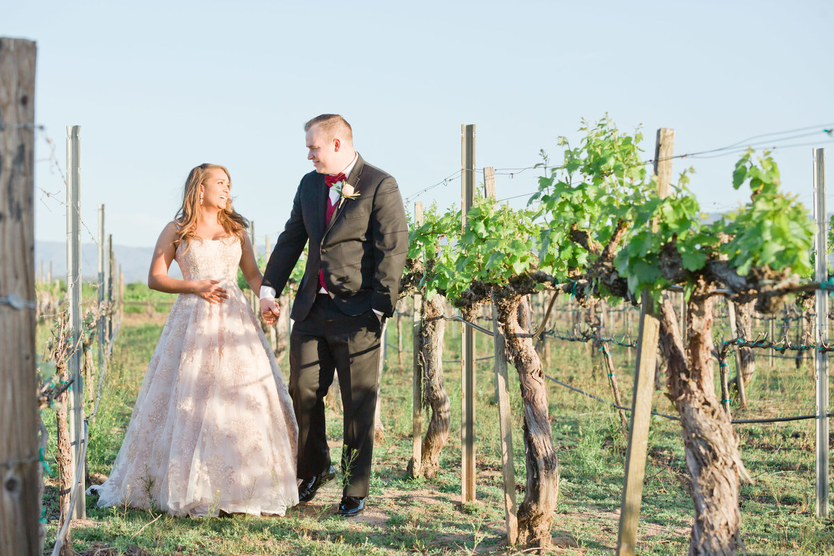 temecula vineyard bridal portraits