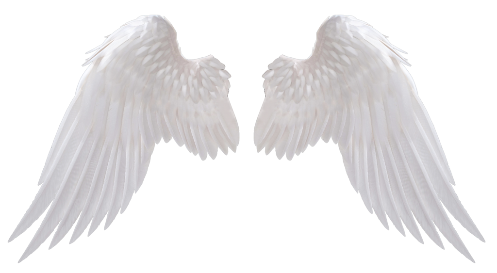 angel_wings_by_no_look_pass-daiw3gs
