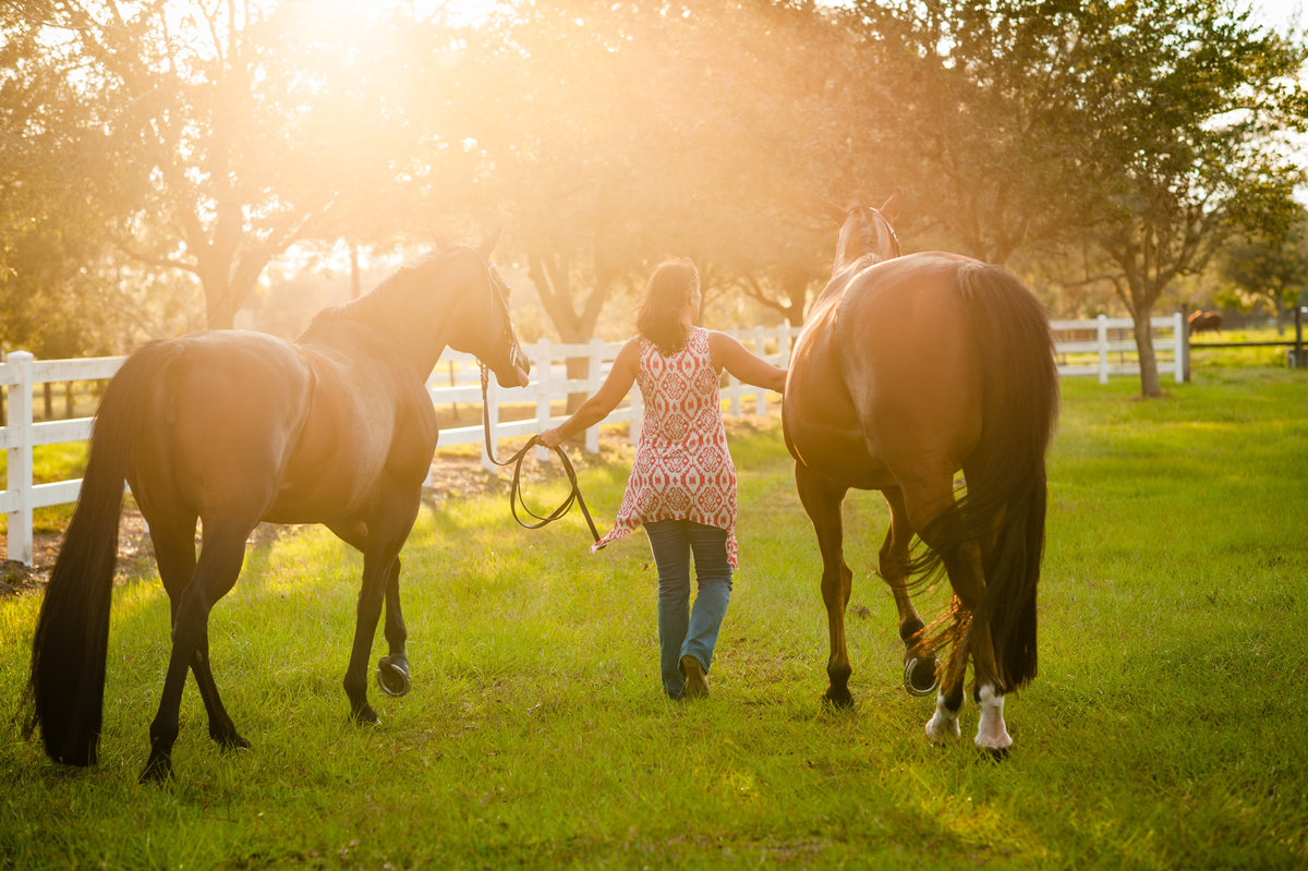 Equine Photography Daytona Beach