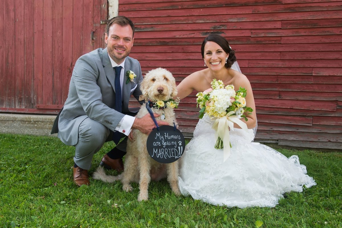 dog friendly Vermont wedding photographer at the Red Clover Inn