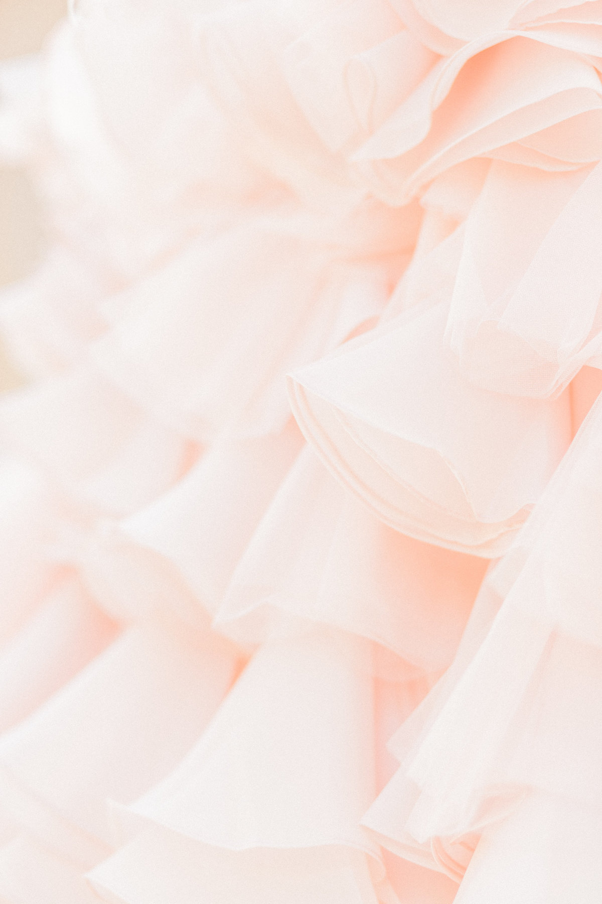 Blush Pink Tulle and Organza Ruffles