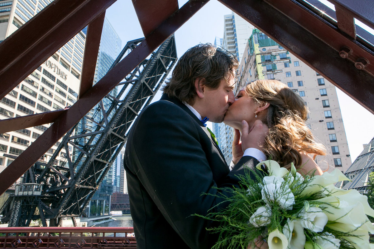 chicago wedding photographers, illinois photography, photographers, top (13 of 70)