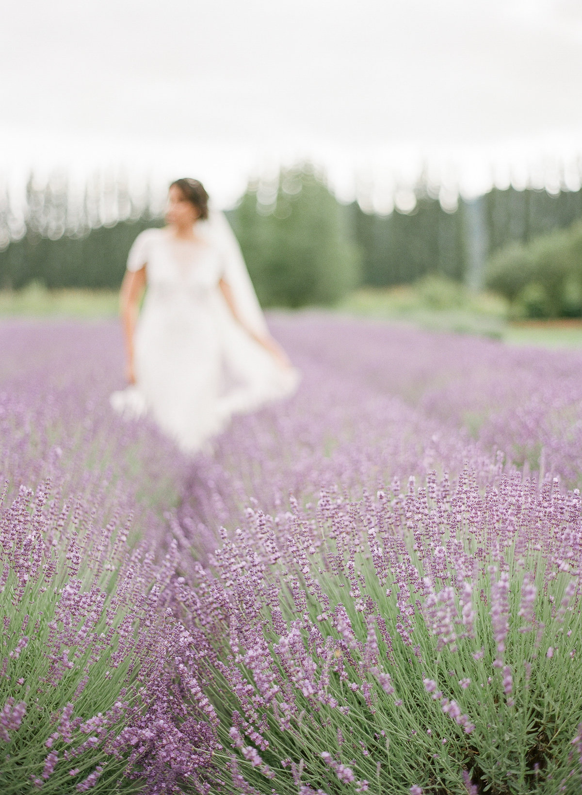 Woodinville Lavender Wedding-12