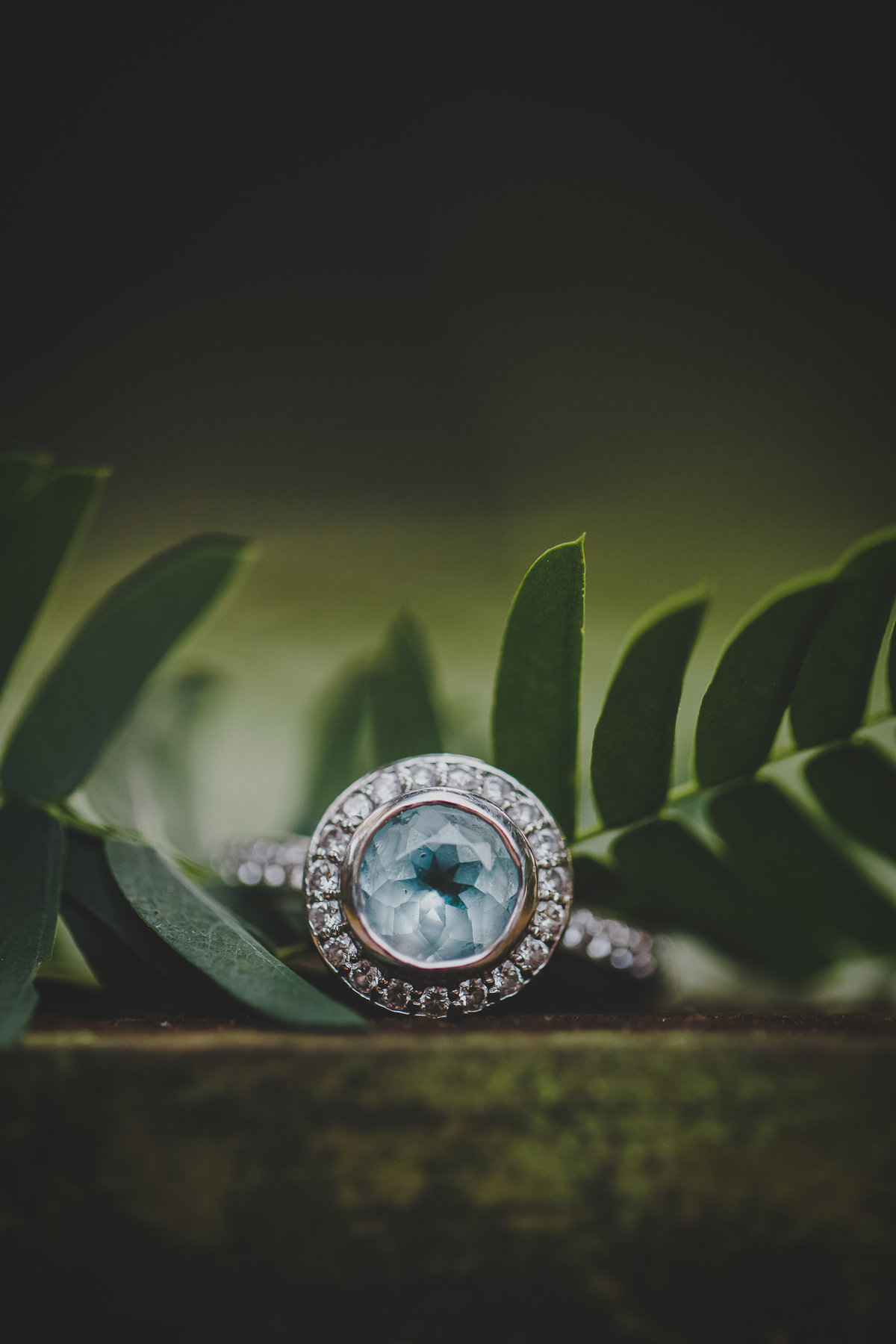 alpine-groves-engagement-session-7876
