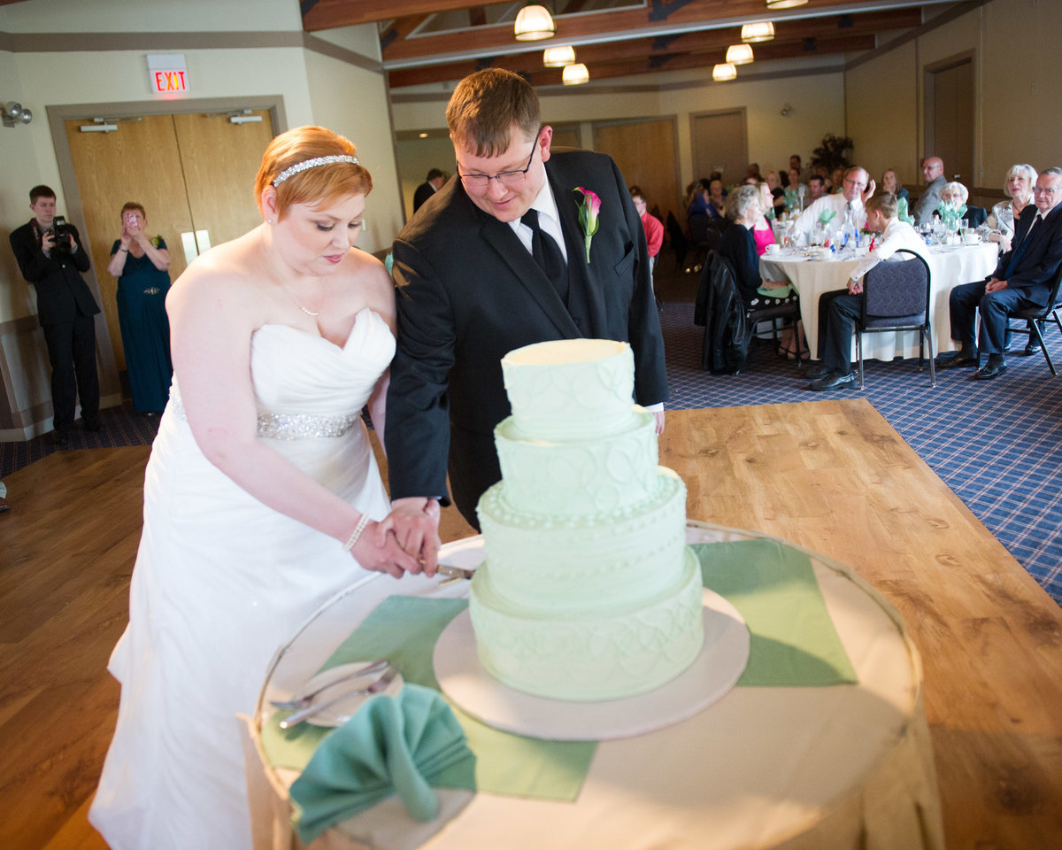 Bride and groom cut cake at wedding reception, Chicago.