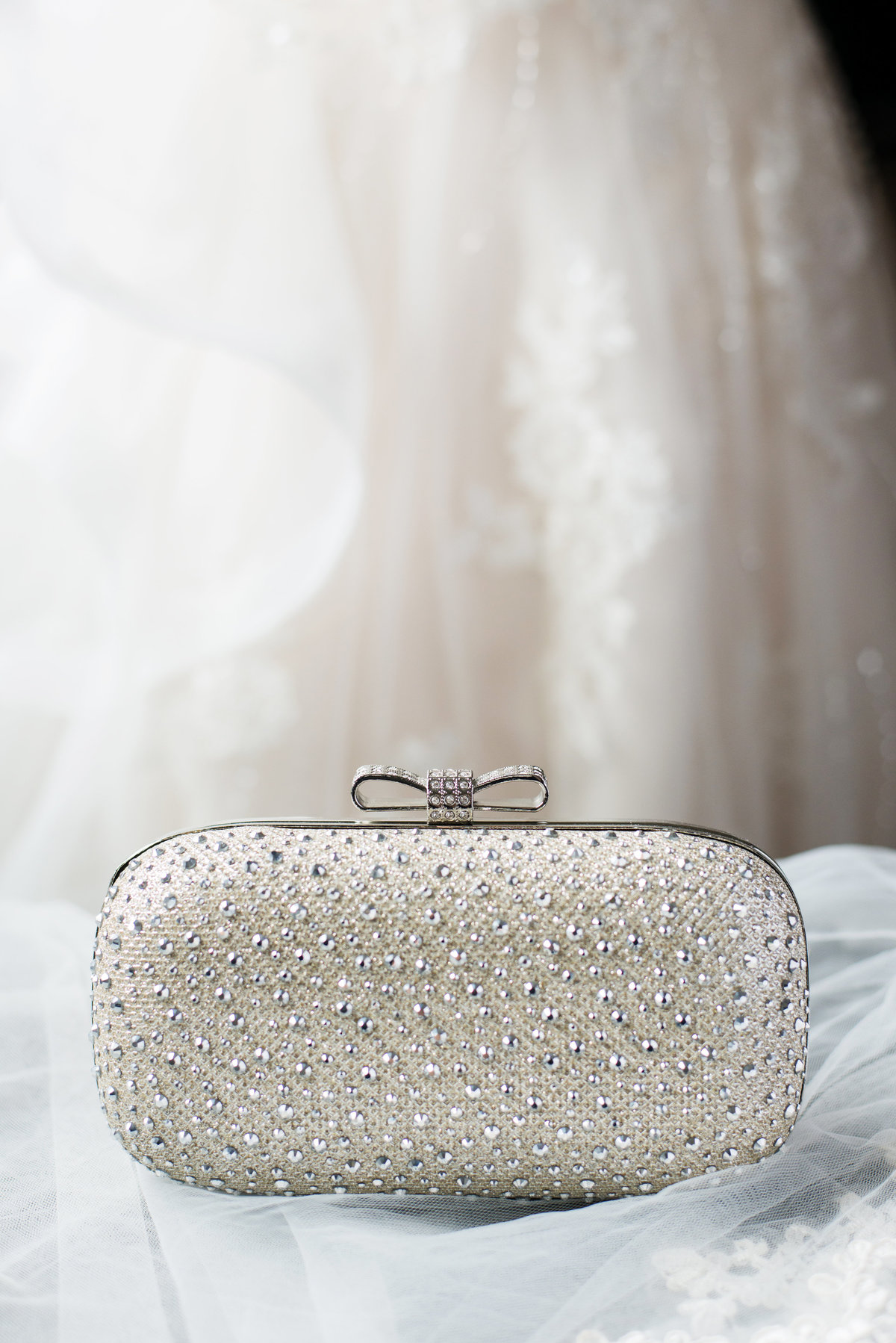 CLoseup photo of Bridal clutch
