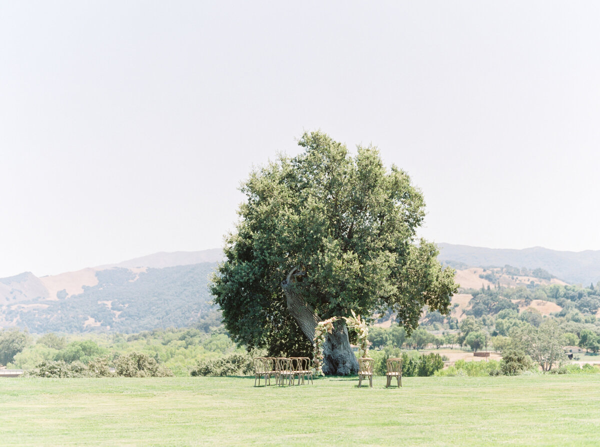 TiffaneyChildsPhotography-CaliforniaWeddingPhotographer-Clara+Alexandre-SunstoneVilla-205