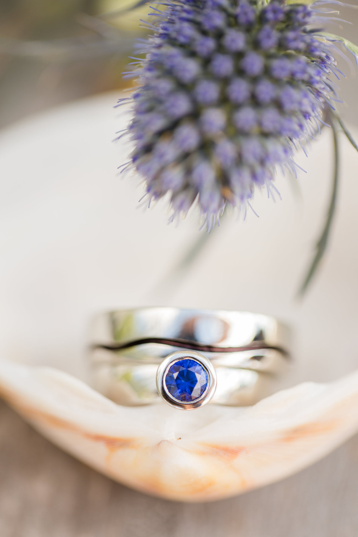 Ottawa-Wedding-Photographer-wedding-rings
