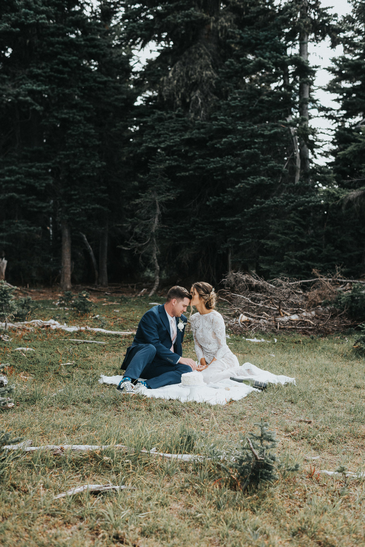 Intimate picnic with bride and groom at Hurricane Ridge Washington