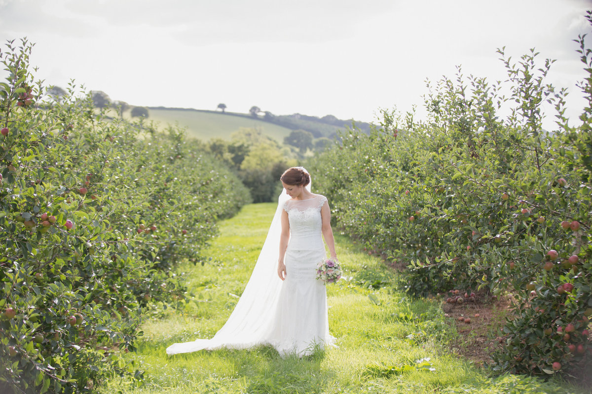 corn barn cullompton devon wedding