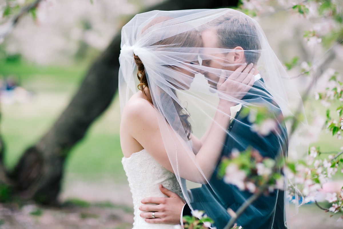 romantic bride and groom under a veil in central park in the spring