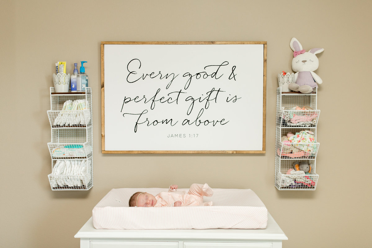 Lifestyle Newborn Photographers in Fargo ND (13)
