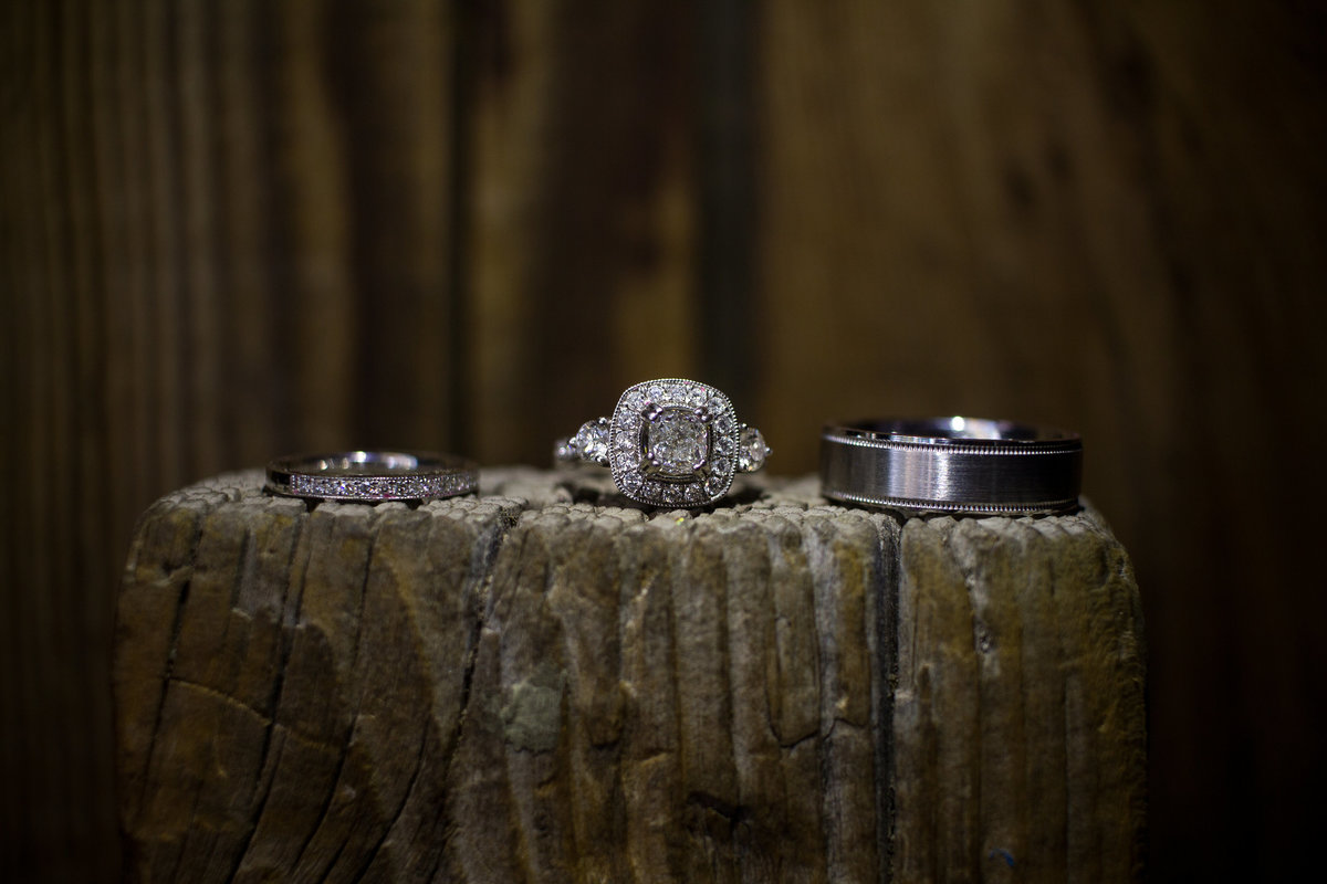 Lane + Richlyn _ Rings_150620_02