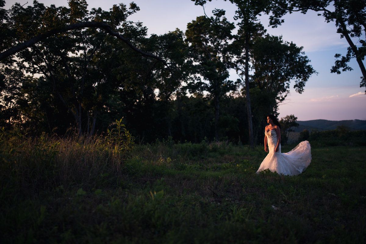 Vinson-Images-Fayetteville-Arkansas-NWA-Wedding-Photographer dress-light
