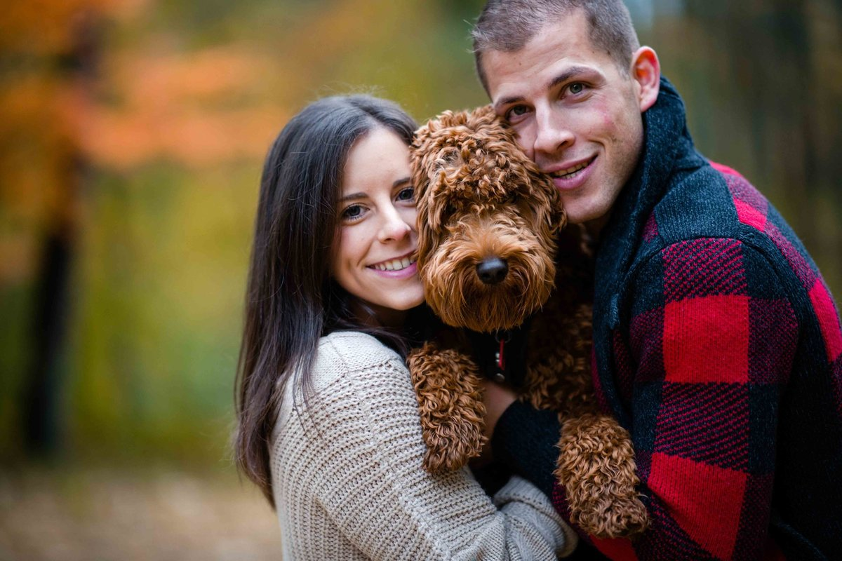 47 labradoodle engagement photos with for stonehurst at hampton valley wedding