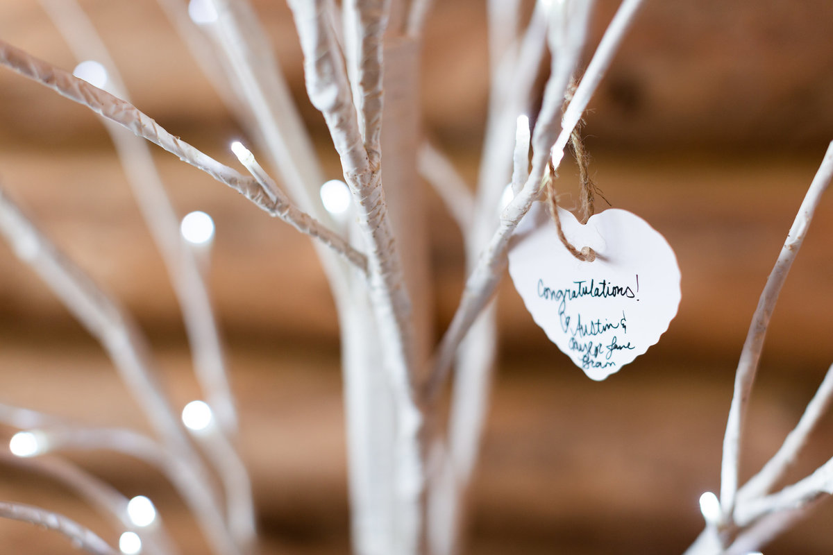 Strawberry-Creek-Ranch-Wedding-Ashley-McKenzie-Photography-Romantic-Mountain-Affair-Navy-Blush-Colorado-guestbook-tree