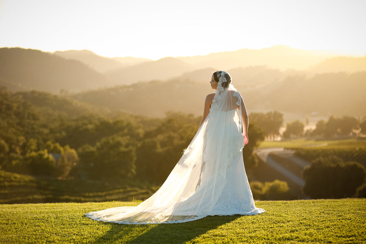 opolo_vineyards_wedding_by_pepper_of_cassia_karin_photography-133