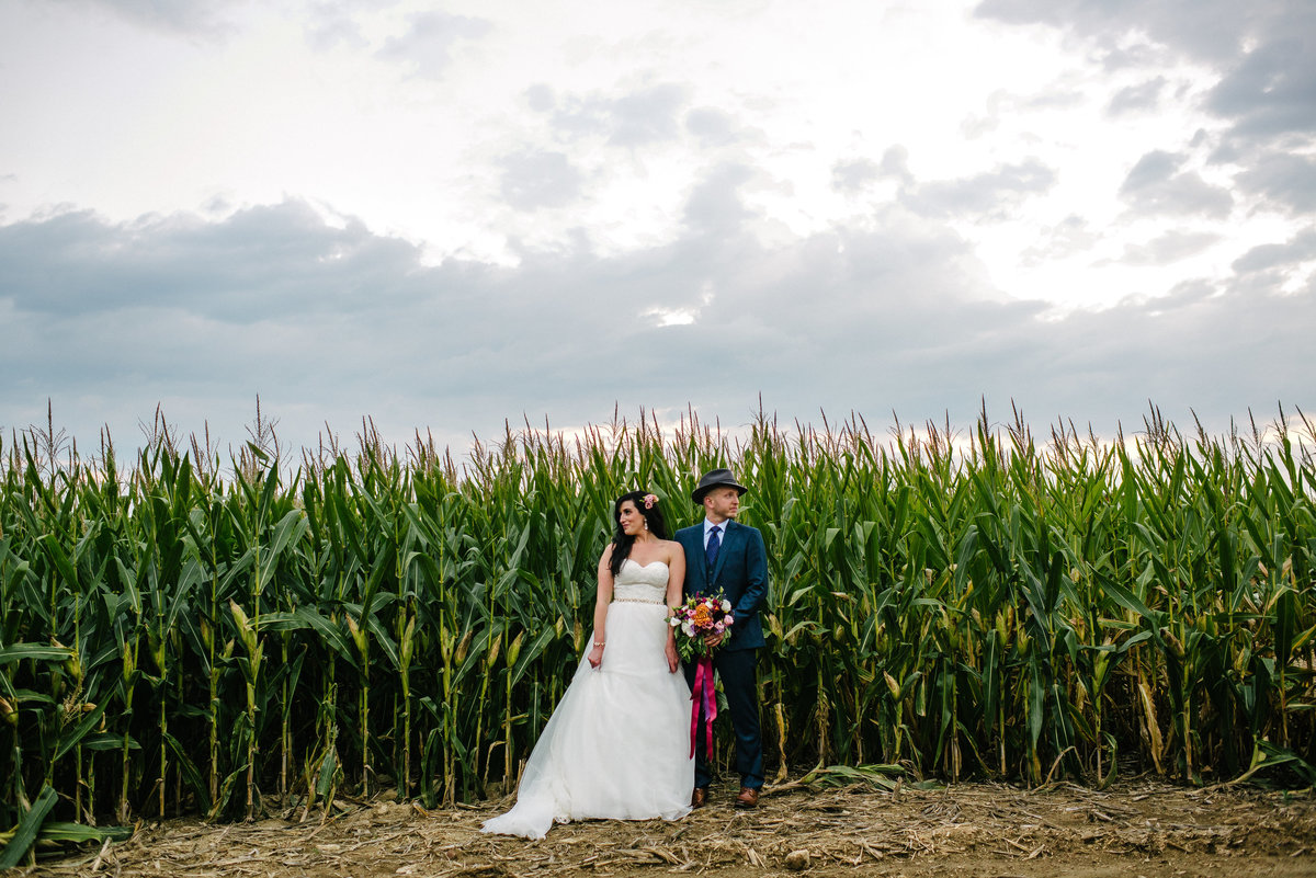 Columbiana OH corn field wedding
