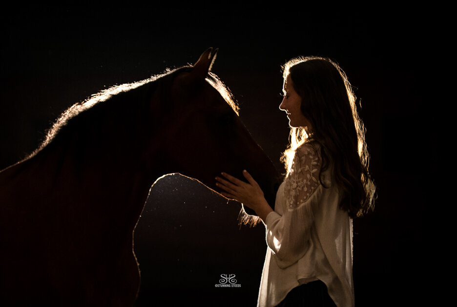 stunning-steeds-photo-night-horse-portrait