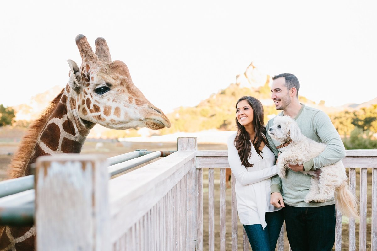 Engagement Photos-Jodee Debes Photography-156
