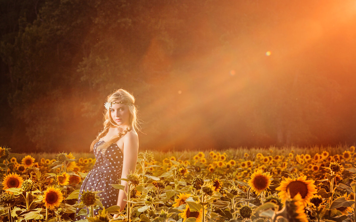 charlotte family photographer jamie lucido at Draper Wildlife Management sunflowers with senior