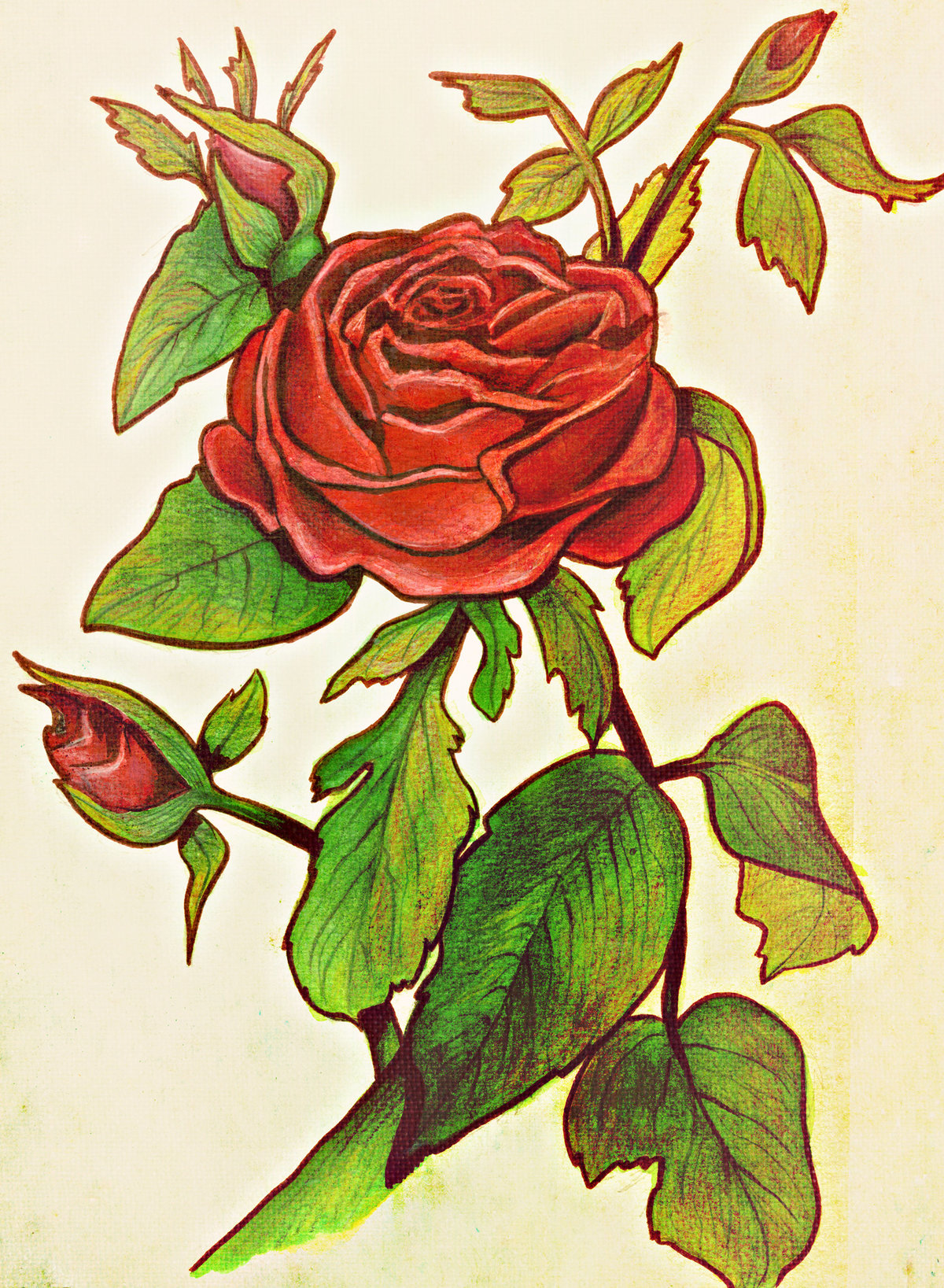 Rose_painting new