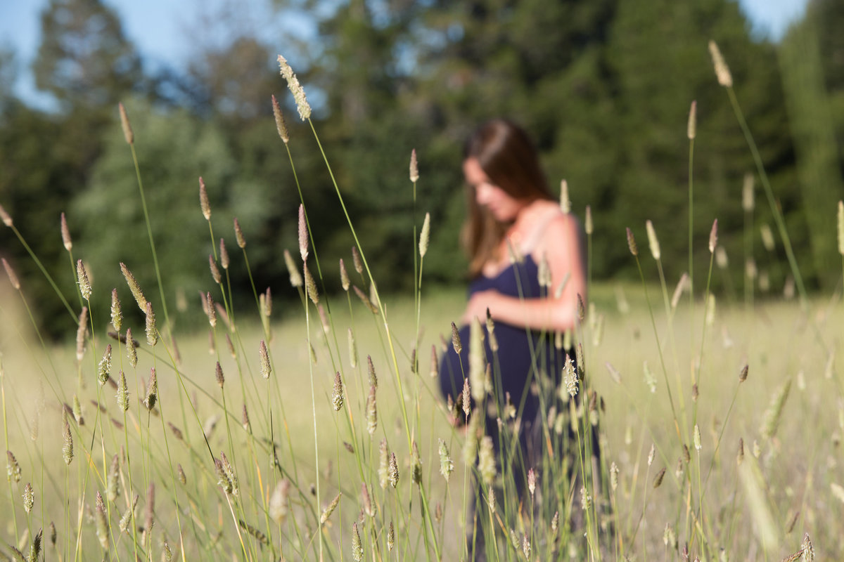 Portola Valley Meadow Maternity, Maternity Photography, Maternity Session, Expecting, Jennifer Baciocco Photography